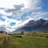 We took a horseback ride around Glenorchy. Surrounded by the Southern Alps, it's easy to see why this place is chosen as the setting for many movies - Lord of the Rings, The Hobbit, Wolverine, and more. The horses that we rode even appeared in some of those films!