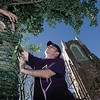 Josh Jones with Cheyenne Electric puts up lights around the trunk of a tree at 1st Presbyterian of Longview Thursday in preparation for xmas. Chris Matula photo.