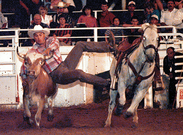 Jim White of Hugo, OK makes the leap in the steer wrestling competition at the Gladewater Round-up Rodeo Thursday night. He logged a time of 4.3 seconds. Chris Matula photo.
