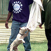 Chris Darden, left, lets (King) a pit bull play with the towel Tuesday afternoon off of Twelth St. in Longview as Larry Johnson looks on. Kevin Green