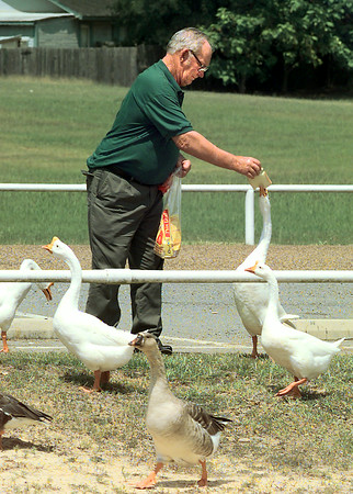 Dewitt Prichard, of, Denton, feeds the geese, Friday afternoon at Lake Gladewater in Gladewater. Dewitt is in town visiting his sisterLois Rogers in Gladewater. Kevin Green