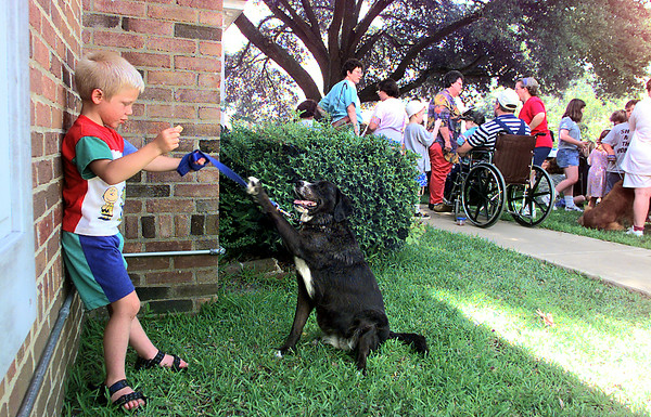 """Dylan Lantz, 5, teaches """"Wendy"""" how to reach for a treat as they await their turn in the Overton Kid's Pet Show Thursday at McMillan Library. Matula photo."""