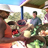 Roxie Willis, left, of Jefferson, inspects a cantaloupe at the Pride of Texas Farmers Market along US 59 in Jefferson as Effie Green, center, and Terry Haynes, right looks on Thursday morning. Kevin Green