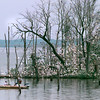 Fishermen fish near an island on Lake Fork outside Quitman where thousands of birds nest during the summer. Kevin Green