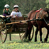 Date:   4/4/98---Dawn Searcy, left, an instructor at Windridge, and Cindy Bates, 17, right, gives a demostration of horse and buggy therapy Saturday afternoon at Horse & Rider 98 fundraiser for Windridge just north of Longview. Kevin green
