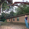 Date:   8/1/98---Harvey Wilson looks up at his tree after a very large part of it fell on his house late Staurday evening in the 1800 blk of Buccaneer Dr. in Longview, Harvey suspected the tree had dried out due to the lack of rain and became brittle and fell putting tree holes in his roof.. Kevin green