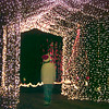 12/02/98---Kale Menges walks through a lighted tunnel on his grandfather's drive-through light display in Hallsville. For a price, visitors can drive a well-displayed path of lights. bahram mark sobhani