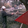Date:   12/23/98----Billy D Reed with McCoy Tree Service of Longview, cleans up debris after a tree limb fell upon a power line due to the ice Wednesday morning on Judosn Rd. in Longview. Kevin green