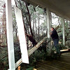 Evelyn Kusch checks out the damage to her home, Tuesday morning, on FM 1649 near Sand Hill outside of Gilmer, as two Pine Trees hit the front of her house and another three fell in her backyard due to the storm late Monday night.  Kevin green