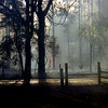 Fire burns outside Daingerfield Fridday afternoon BY Wild Bill