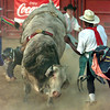 Date:   6/20/98---Bull Fighter David Brooks, right of Ft Worth moves in as a bull rider's hand is caught in the rope while riding during the Juneteenth Rodeo at the Longview Fairgrounds Saturday night in Longview. kevin green