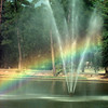 Date:   6/22/98----Ducks float across Teague Park Lake as a rainbow makes its way through the fountain spray Monday afternoon in Longview. Kevin green