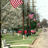 2/15/99---Around fifty American flags fly along White Road Monday afternoon in White Oak. Kevin Green