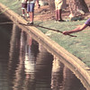 6/17/99---Gina Martinez, 8, of Hallsville, uses a tree branch to drop her line in the Teague Park lake Thursday during the fishing rodeo. bahram mark sobhani