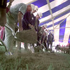 10/5/99---Local, Regional and Statewide representatives turn the soil at a groundbreaking ceremony Tuesday for the new Tenaska Power Plant south of Henderson. The new plant is scheduled to open in the first half of 2001. bahram mark sobhani