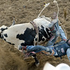 RODEO_1796