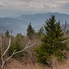 Overlooking view of the Great Smoky Mountains from the trail