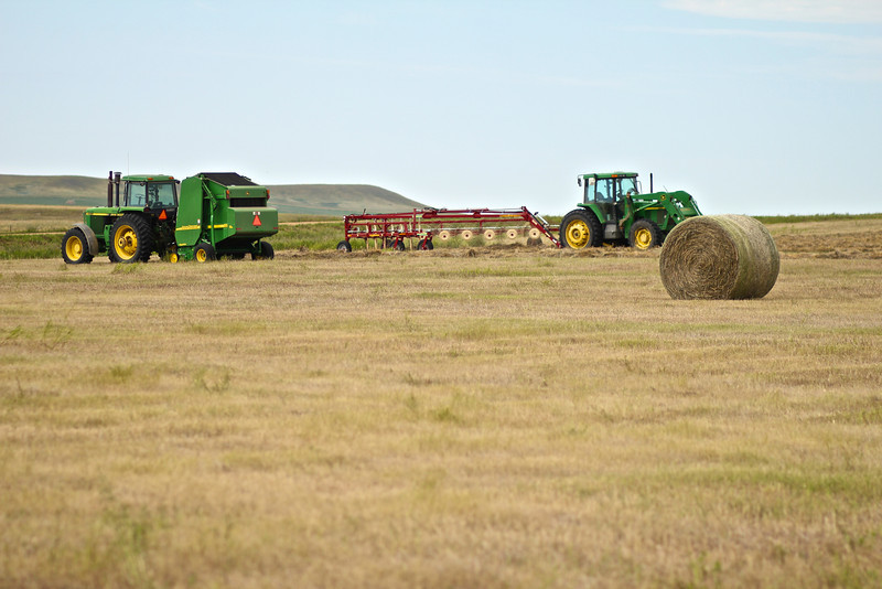 These were parked on the way back from church.<br /> <br /> This year, we've had a bumper crop of hay!