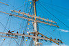 Statsraad Lehmkuhl under Tall Ships Race