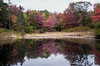 Hidden Ledges pond, Phippsburg, Maine October foliage