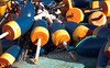 lobster buoys, blue and gold, Friendship, Maine lobstering gear