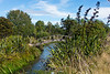 TThe Waitahanui River is one of the three main rivers that flow into Lake Taupo