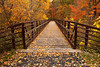 Beaver Creek Reservation - Oct192012_4640 - Amherst, Ohio