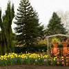 Flower Pot Men enjoying spring at Oregon Garden