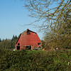 Red barn, Scio Oregon