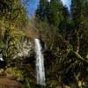 Shellburg Falls and mossy covered pathways (Salem, Oregon)