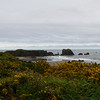 Oregon coast - North Coquille Point rock & Middle Coquille Point rock, Bandon