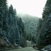 Oregon highways with snow covered trees
