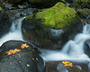 Elowah Creek cascades. Taken in the Columbia River Gorge National Scenic Area, Oregon, USA.