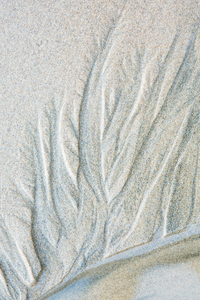 Sand patterns, illustrating the fractal geometry of nature. Taken at Indian Beach, Ecola State Park, Oregon, USA.