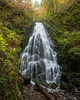 Fairy Falls. Taken in the Columbia River Gorge National Scenic Area, Oregon, USA.