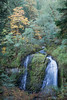 Taken in the Columbia River Gorge National Scenic Area, Oregon, USA.