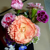 Carnation bouquet 059