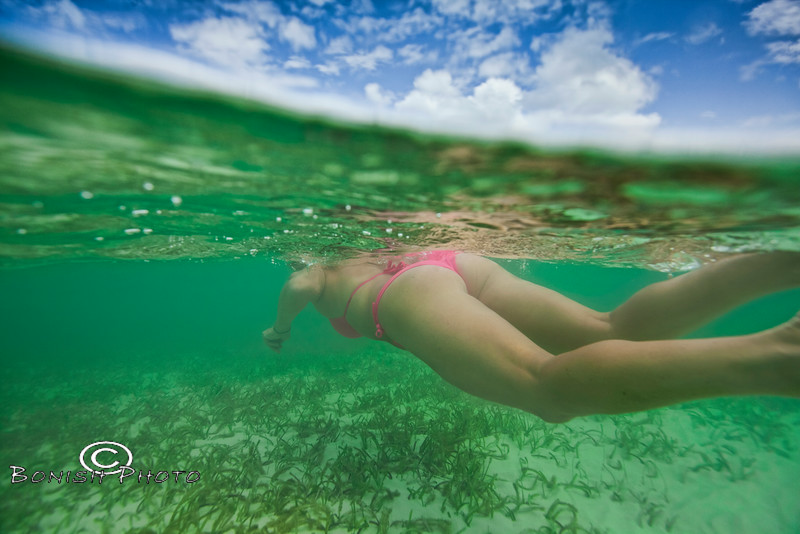 Following your Dreams - Underwater Photography by Pat Bonish