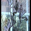 Dancing Frogs Wind Chime