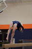 girls gymnastics 2013 773
