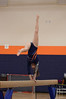 girls gymnastics 2013 738