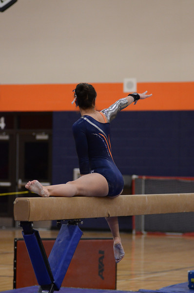 girls gymnastics 2013 749