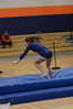 girls gymnastics 2013 502