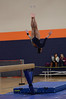 girls gymnastics 2013 802