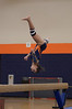 girls gymnastics 2013 822