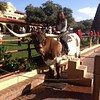 Sophie from Germany rides a longhorn in Texas.