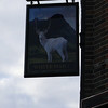 Pub Sign - White Hart, Sankey Street, Warrington 101123
