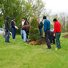 Eagle Scouts Planting Trees