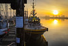 "Sunrise at Steveston Harbour with pilot boat ""Pacific Navigstor"" in the foreground."