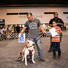 2014 Reliant Park World Series of Dog Shows  TAMRAMCGHWeight Pull Competition